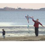 Wollaston Beach Kite flying